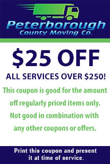 $25 Off All Services Over $250